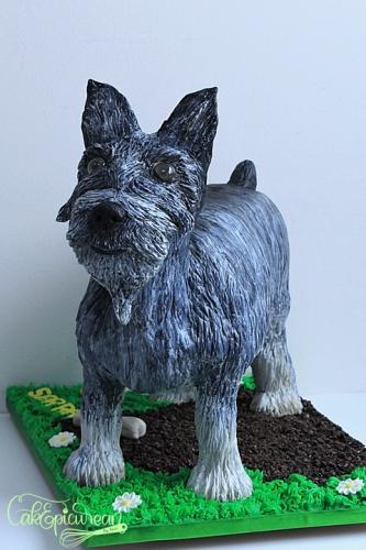 Tic-Tac_Schnazer_Dog_Cake2