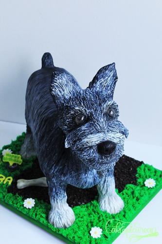 Tic-Tac_Schnazer_Dog_Cake3