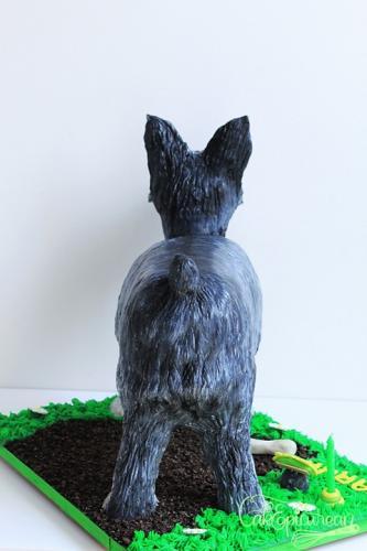Tic-Tac_Schnazer_Dog_Cake4