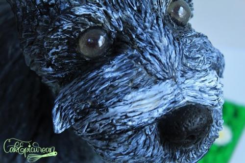 Tic-Tac_Schnazer_Dog_Cake8