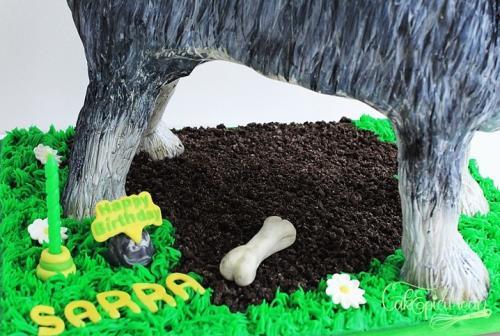 Tic-Tac_Schnazer_Dog_Cake9